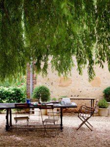 Stablo u bašti